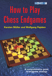 gambit_How_to_Play_Chess_Endgames_Big__10602.1431988832.350.250