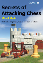 gambit_Secrets_of_Attacking_Chess_Big__14285.1431988841.350.250