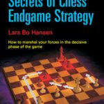 gambit_Secrets_of_Chess_Endgame_Strategy_Big__92786.1431988842.350.250