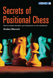 gambit_Secrets_of_Positional_Chess_Big__10177.1431988844.350.250