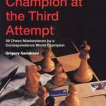gambit_World_Champion_at_the_Third_Attempt_Big__91104.1431988856.350.250