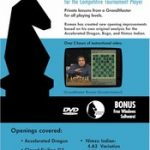 romans_lab_vol_12_mastering_chess_chess_dvd_600__58023.1435080089.350.250